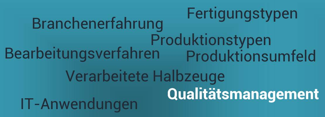 Interimslösung Qualitätsmanagement
